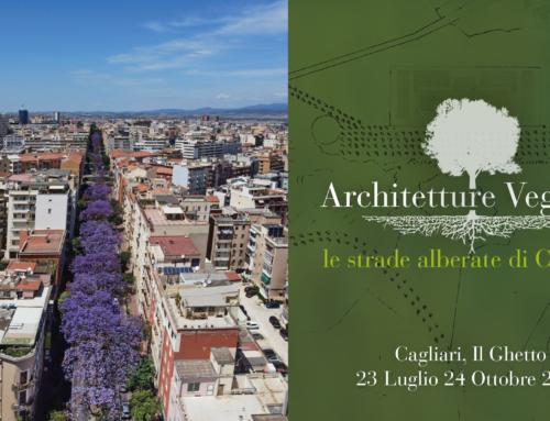 Architetture vegetali. Le strade alberate di Cagliari